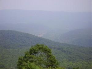 MAFWDA Rocky Gap Run 028