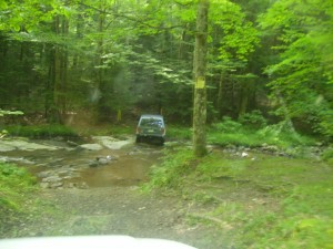 Potomac State Forest 0013