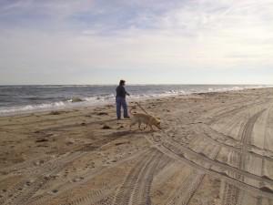 2010 Beach Run 045
