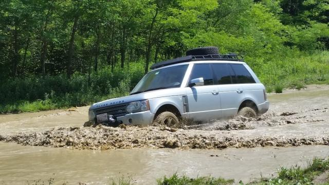 In the mud.
