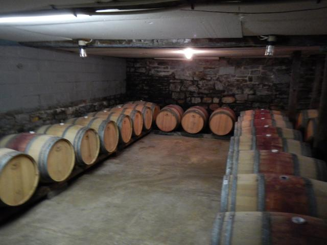 At the winery.