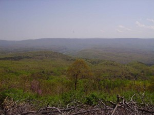 2008-04-26-Green-Ridge-Trail-Ride 001  48