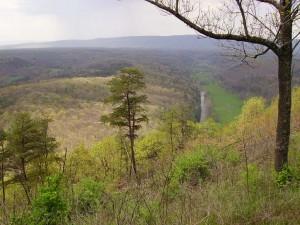 2008-04-26-Green-Ridge-Trail-Ride 001  50