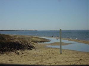 2008 Beach Run to OBX 029