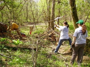 Pax River Cleanup 005
