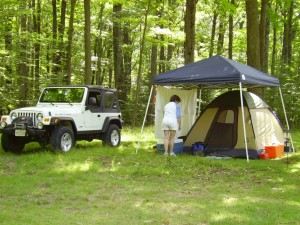 Potomac State Forest 0004
