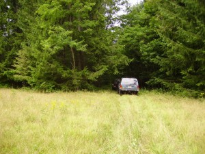 Potomac State Forest 0014